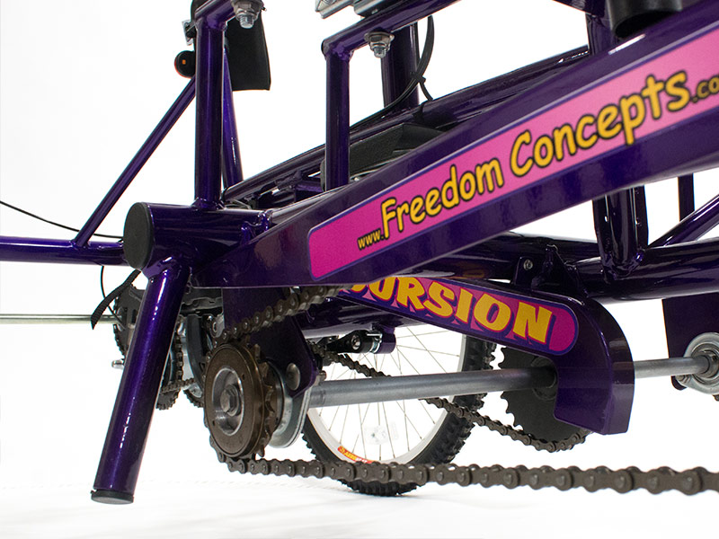 Custom Tandem for Conjoined Twin Sisters